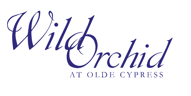Wild Orchid at Old Cypress